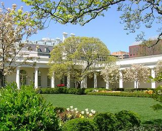 White-house-rose-garden_Full