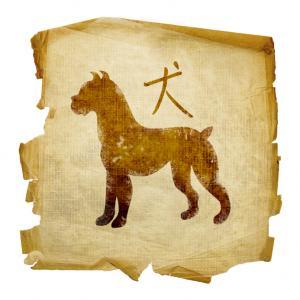 Ancient dog